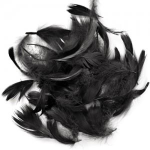 Перья для декора Чёрный (12 г.)
